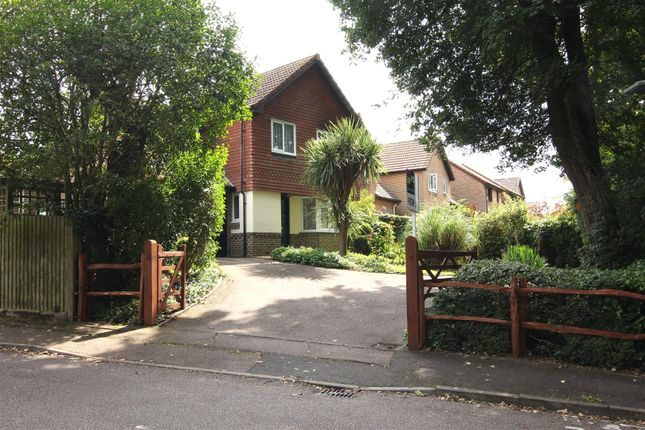 Thumbnail Detached house for sale in Henry Burt Way, Burgess Hill