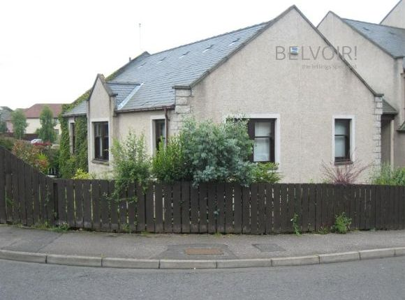 Thumbnail Detached bungalow to rent in Heron Rise, Dundee