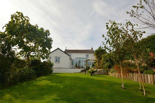 Thumbnail Detached house for sale in Lanner, Redruth, Cornwall