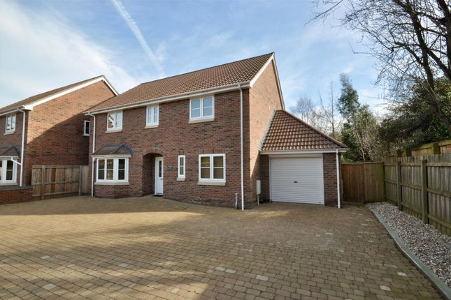 Thumbnail Detached house for sale in Killams Lane, Taunton