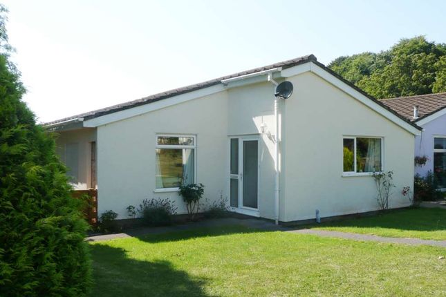 Thumbnail Detached bungalow to rent in Marldon Grove, Marldon, Paignton