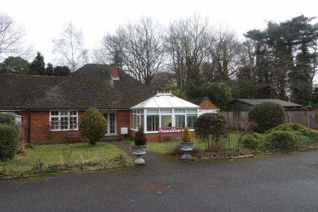 Thumbnail Semi-detached bungalow to rent in Fleet