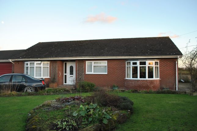 Thumbnail Semi-detached bungalow to rent in Oldcastle Lane, Oldcastle, Malpas, Cheshire