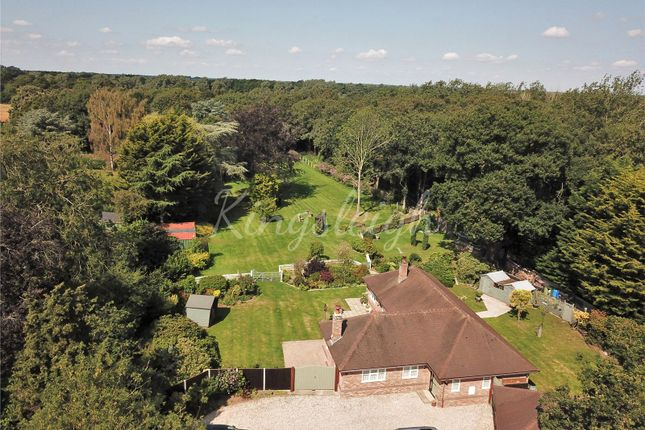 Thumbnail Bungalow for sale in Moor Road, Langham, Colchester, Essex
