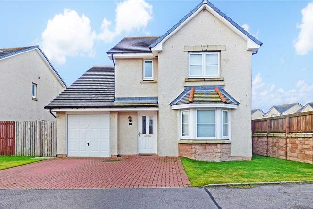 Thumbnail Detached house to rent in Eskywell Place, Portlethen, Aberdeen