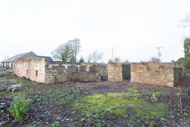 _Mg_9365 of Templehall, Longforgan, Dundee DD2