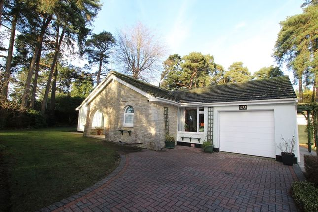 2 bed detached bungalow for sale in Pinewood Road, Ferndown