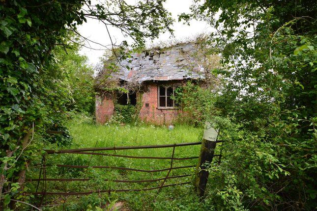 Cottage for sale in Green Lane, Redlingfield, Eye