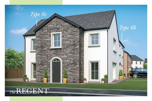 Thumbnail Semi-detached house for sale in Moorfield Avenue, Comber, Newtownards