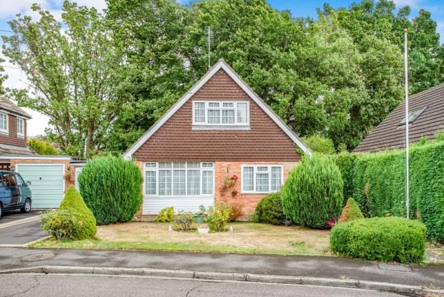 Thumbnail Bungalow for sale in Hook, Hampshire