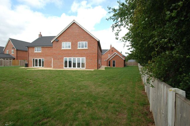 Thumbnail Detached house to rent in Church Farm Close, Bramerton, Norwich