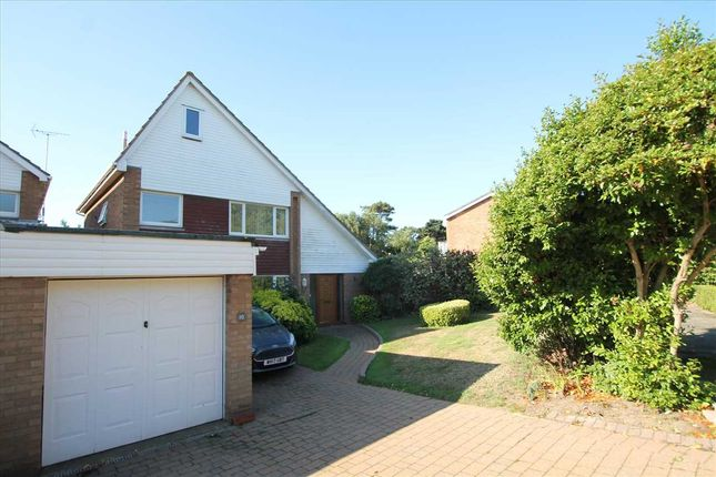Thumbnail Property for sale in The Pines, Old Felixstowe, Felixstowe