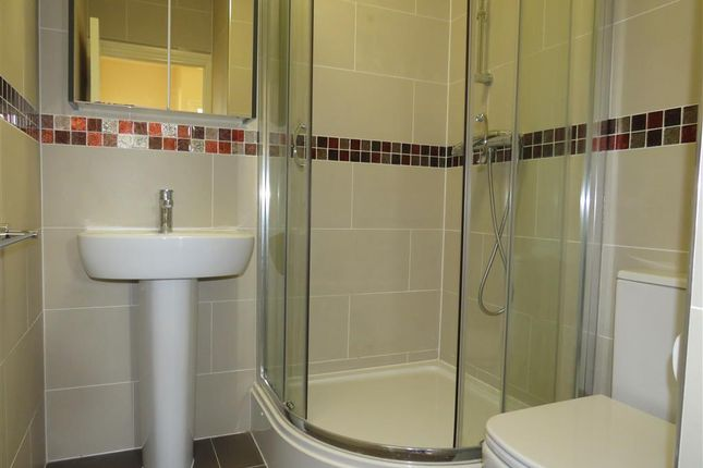 Shower Room of Romsey Road, Shirley, Southampton SO16