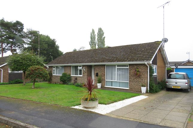 Thumbnail Detached bungalow for sale in Mayfly Close, Fordingbridge