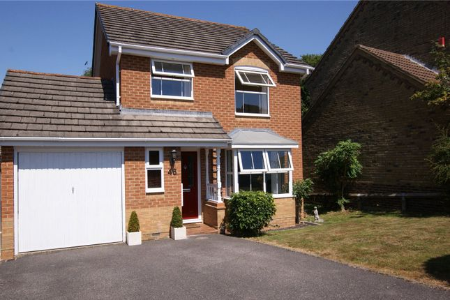 Thumbnail Detached house to rent in Edwina Drive, Poole