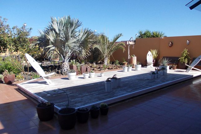 Pool Area of Drago 9, Corralejo, Fuerteventura, Canary Islands, Spain