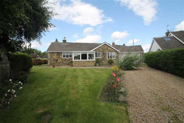 Thumbnail Detached bungalow for sale in Lawnfield Road, Bishop Monkton, Harrogate, North Yorkshire
