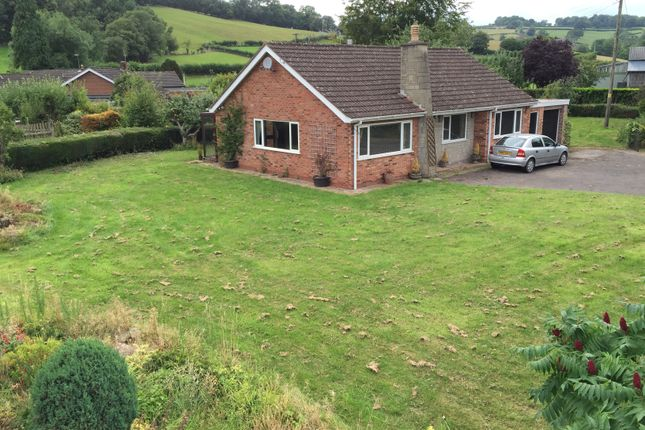 Thumbnail Bungalow for sale in Ewyas Harold, Herefordshire