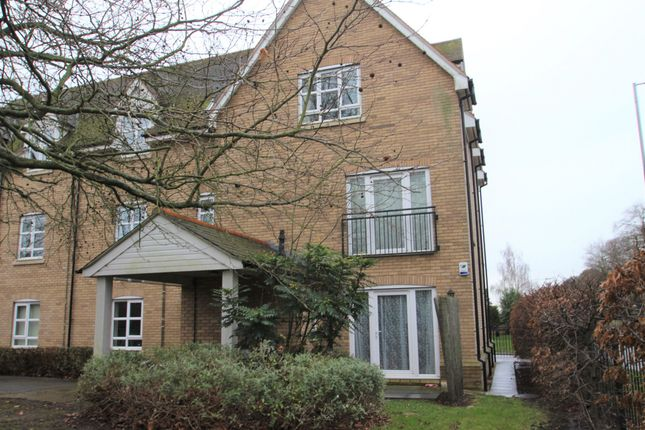 Thumbnail Flat to rent in Linnet Mews, Colchester, Essex