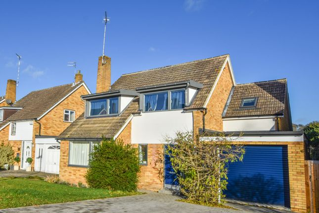 Thumbnail Detached house to rent in Rib Vale, Hertford