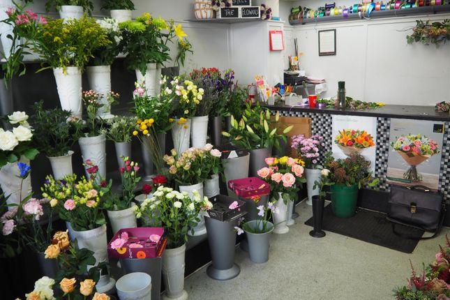 Thumbnail Retail premises for sale in Florist HG4, North Yorkshire