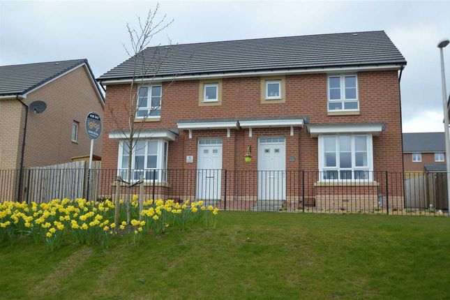 Thumbnail Semi-detached house for sale in Cot Castle View East, Lockhart Gardens, Stonehouse