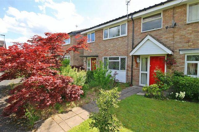 Thumbnail Semi-detached house to rent in Ackers Lane, Stockton Heath, Warrington