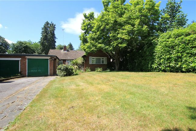 Thumbnail Detached bungalow to rent in Oak Tree Close, Virginia Water