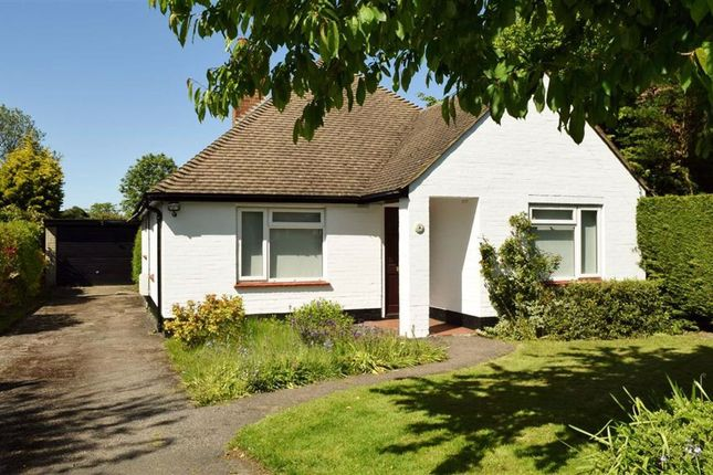 Thumbnail Detached bungalow to rent in Homefield Road, Riverhead
