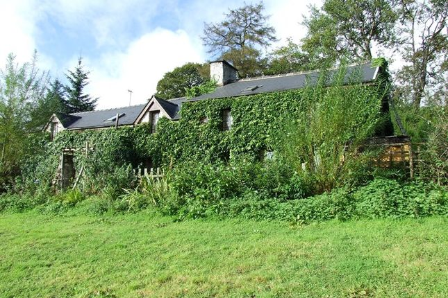 Thumbnail Detached house for sale in Llanwrtyd Wells, Powys, 4Te.