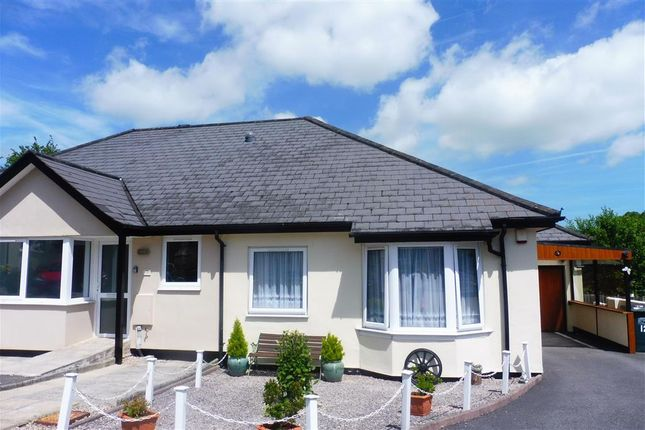 Thumbnail Bungalow to rent in Rangers Close, Buckfastleigh