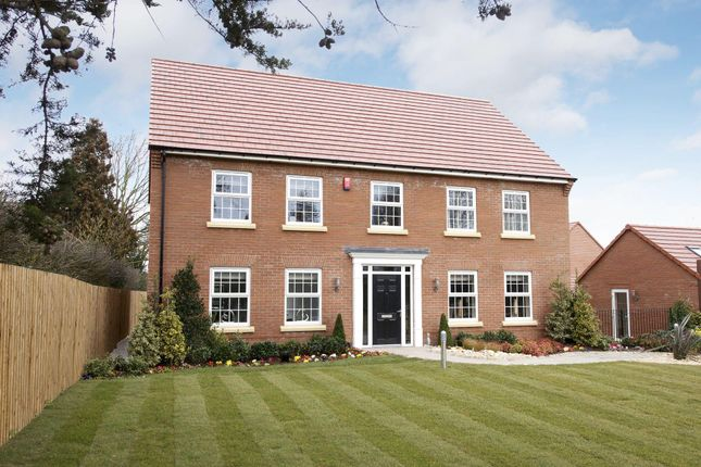 """Thumbnail Detached house for sale in """"Gilthorpe"""" at Driffield Road, Beverley"""
