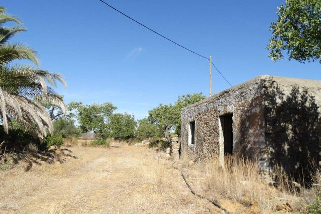 Land for sale in Faro Municipality, Portugal