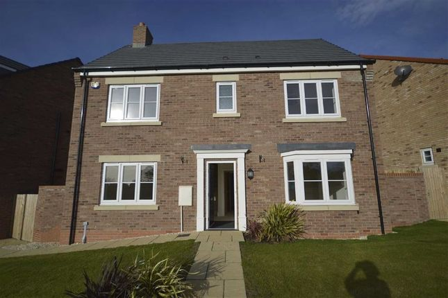 Thumbnail Detached house to rent in Malling Avenue, Eastfield, Scarborough
