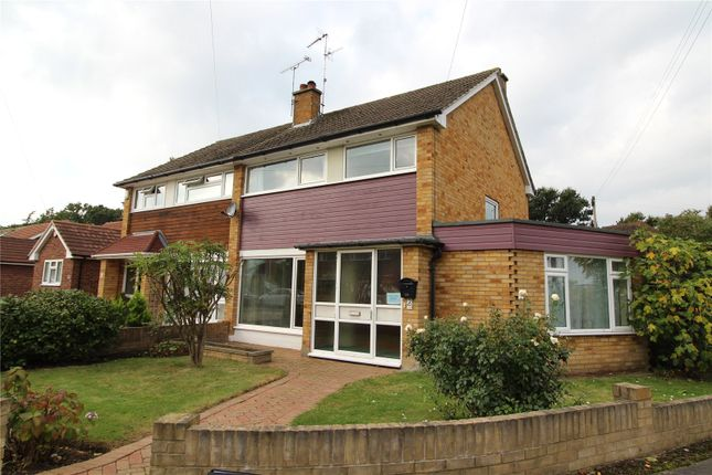 Thumbnail Semi-detached house to rent in Oakwood Avenue, Hutton