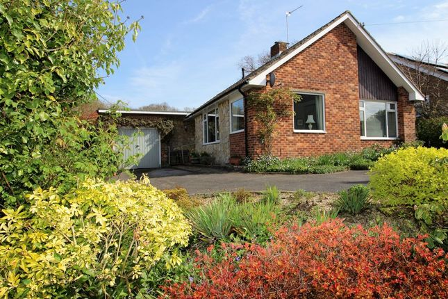 3 bed bungalow for sale in Ashton Close, Bishops Waltham