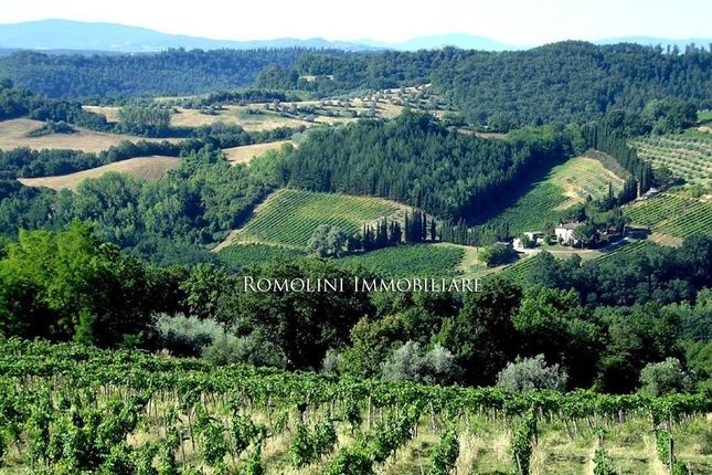 Farm for sale in San Gimignano, Tuscany, Italy