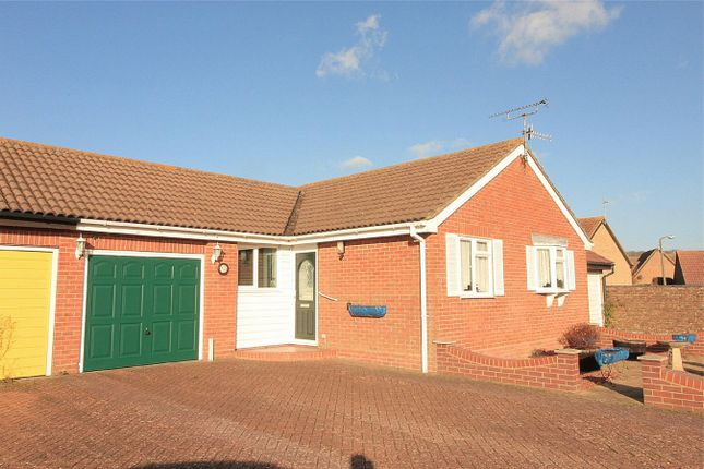 Thumbnail Detached bungalow for sale in The Briary, Bexhill On Sea, East Sussex