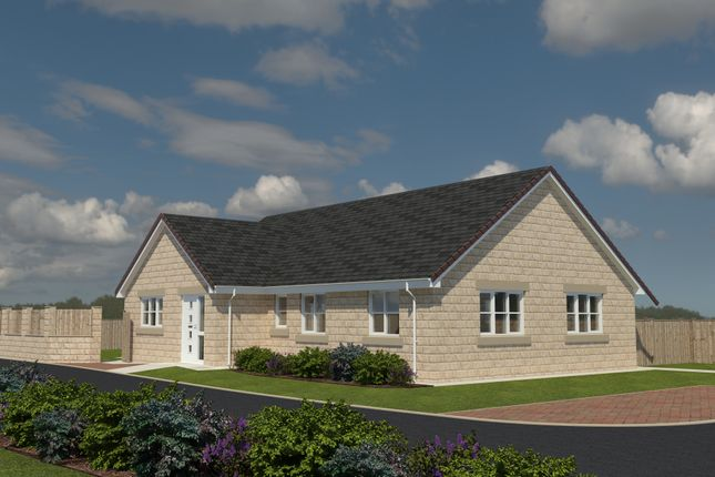Thumbnail Detached bungalow for sale in The Sapphire, Paddock View, Hambleton