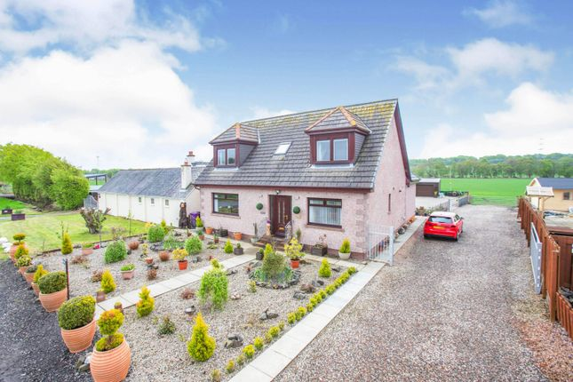 Thumbnail Detached house for sale in Little Brechin, Brechin