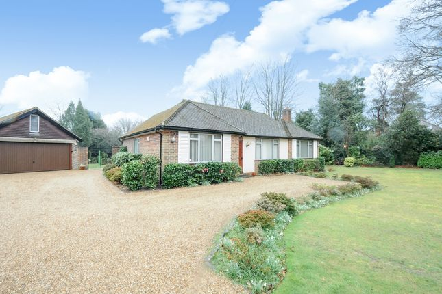 Thumbnail Bungalow to rent in The Spinney, Sunningdale, Ascot