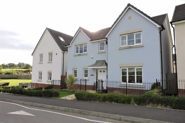Thumbnail Detached house for sale in Clos Y Wern, Hendy, Pontarddulais