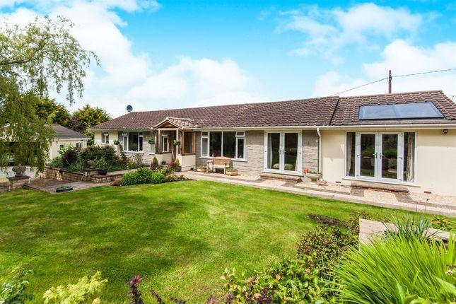 Thumbnail Detached bungalow for sale in Longdown, Longdown, Exeter