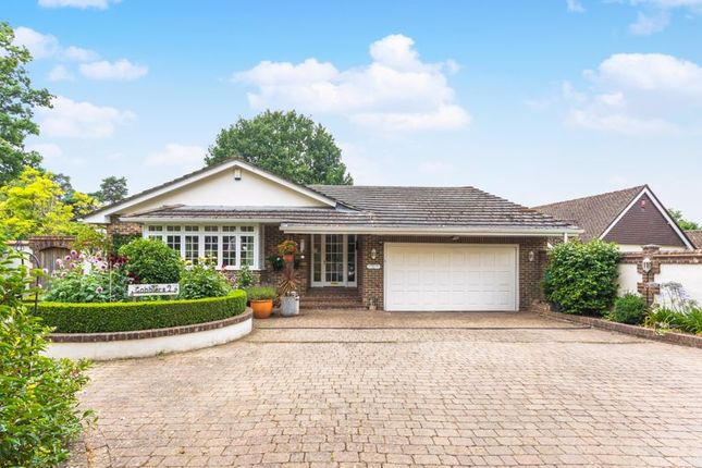 Thumbnail Detached bungalow for sale in Yew Lane, East Grinstead