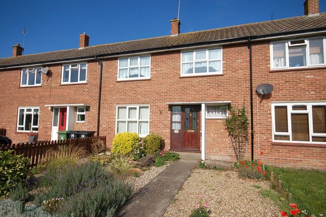 Thumbnail Terraced house to rent in Norfolk Road, Thetford