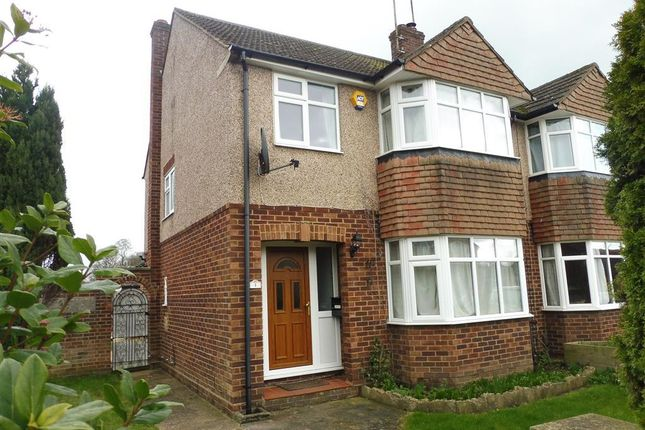 Thumbnail Property to rent in Shakespeare Road, Colchester