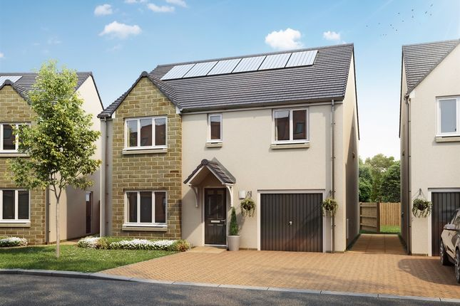 """Thumbnail Detached house for sale in """"The Whithorn """" at Brodie Road, Dunbar"""
