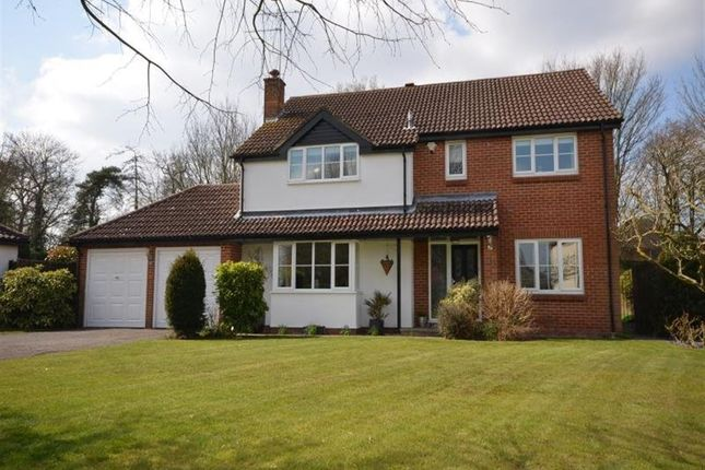 Thumbnail Detached house to rent in Five Acres, Cambridge Road, Stansted