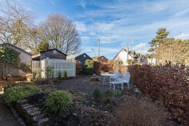 Garden of The Old School, Bowden, Melrose TD6
