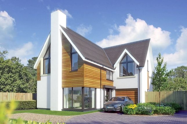 Thumbnail Detached house for sale in Sky End Lane, Hordle, Lymington